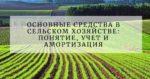 Основные средства в сельском хозяйстве: понятие, учет и амортизация