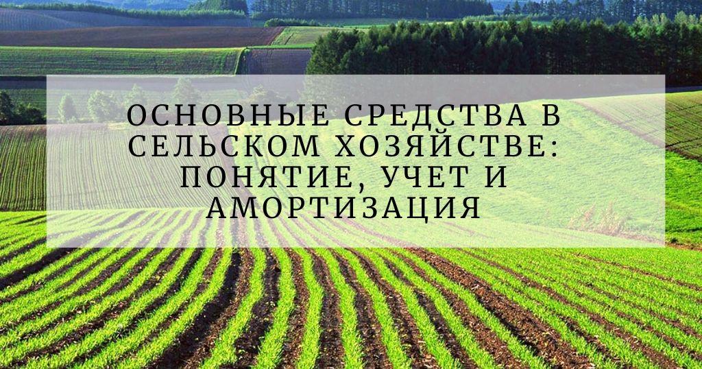 Учет основных средств в сельском хозяйстве