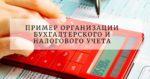 Пример организации бухгалтерского и налогового учета