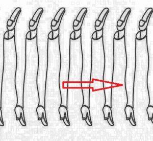 Ответ на загадку про ноги и людей