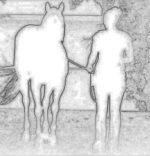Куда идет девушка с лошадью?