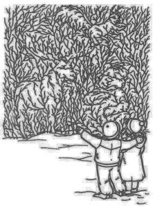 Что за звери в лесу?