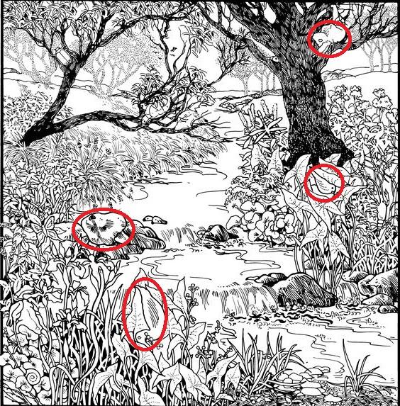 Ответы в картинках сложные