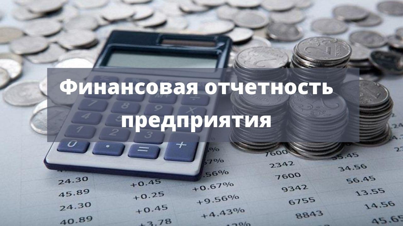 Состав финансовой отчетности предприятия