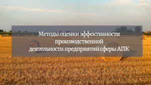 Методы оценки эффективности производственной деятельности предприятий АПК