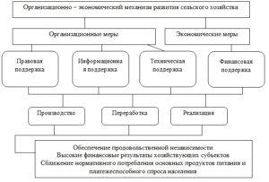 Организационный механизм развития сельского хозяйства