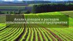 Анализ доходов и расходов сельскохозяйственного предприятия