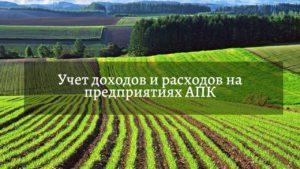 Учет доходов и расходов в сельском хозяйстве